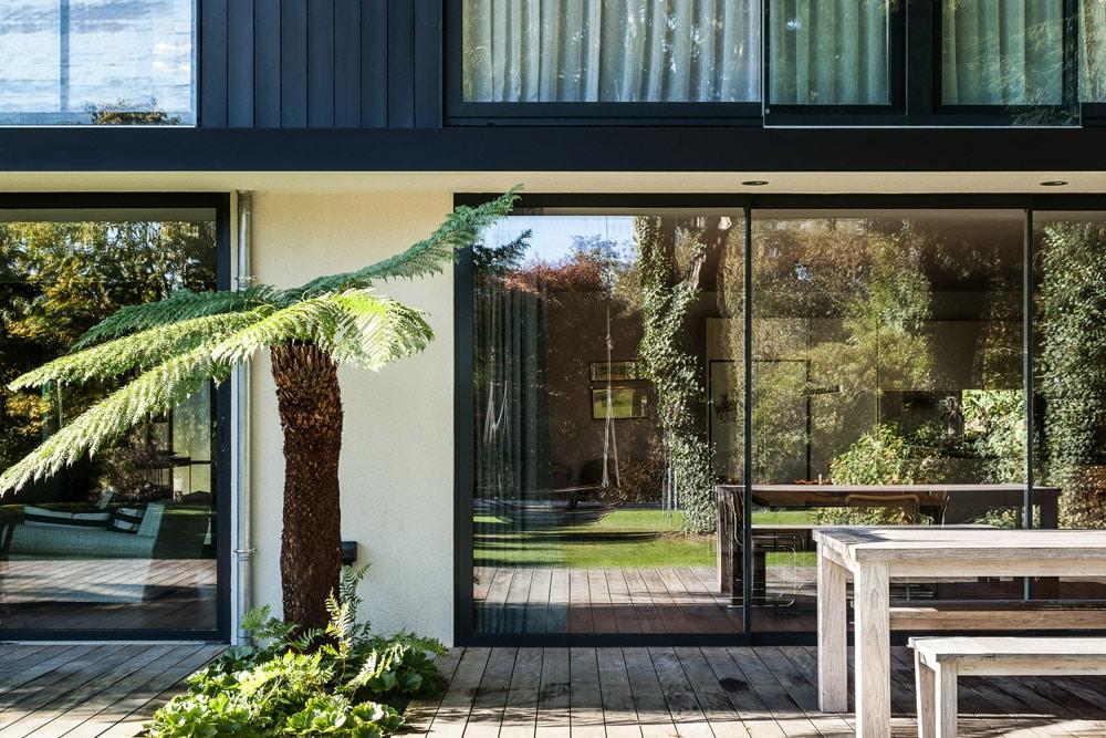 glass patio door with palm tree